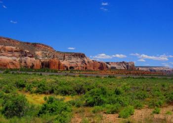 New Mexico Broadband