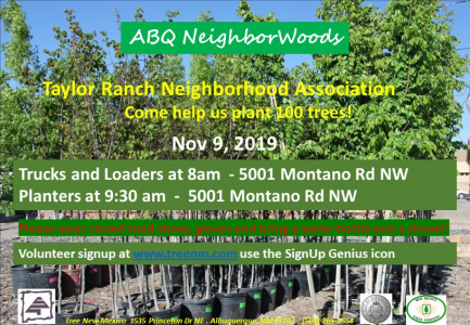 ABQ NeighborWoods Tree Planting in Taylor Ranch